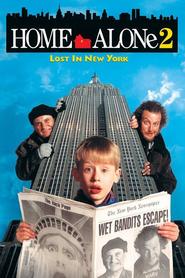 Ensam hemma 2: Vilse i New York